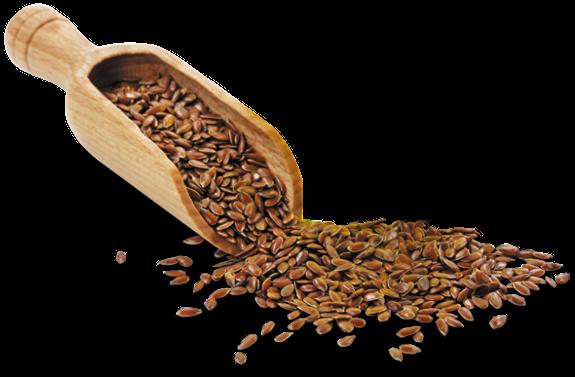 Semínka k naklíčení