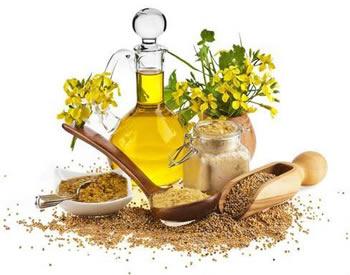Jedlé oleje a tuky