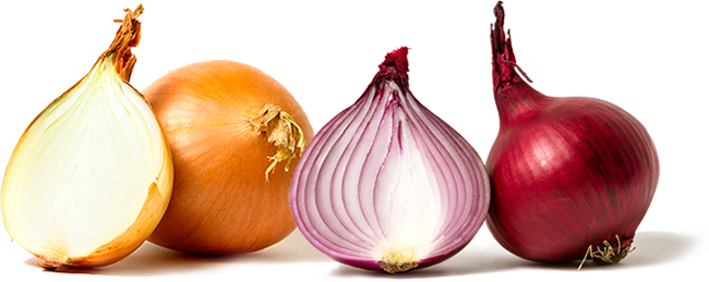 onions_clipped_rev_5