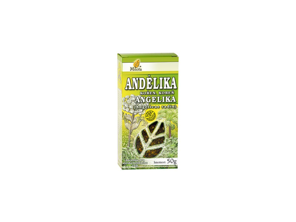 Andělika kořen 50g x Archangelica officinalis radix cons.