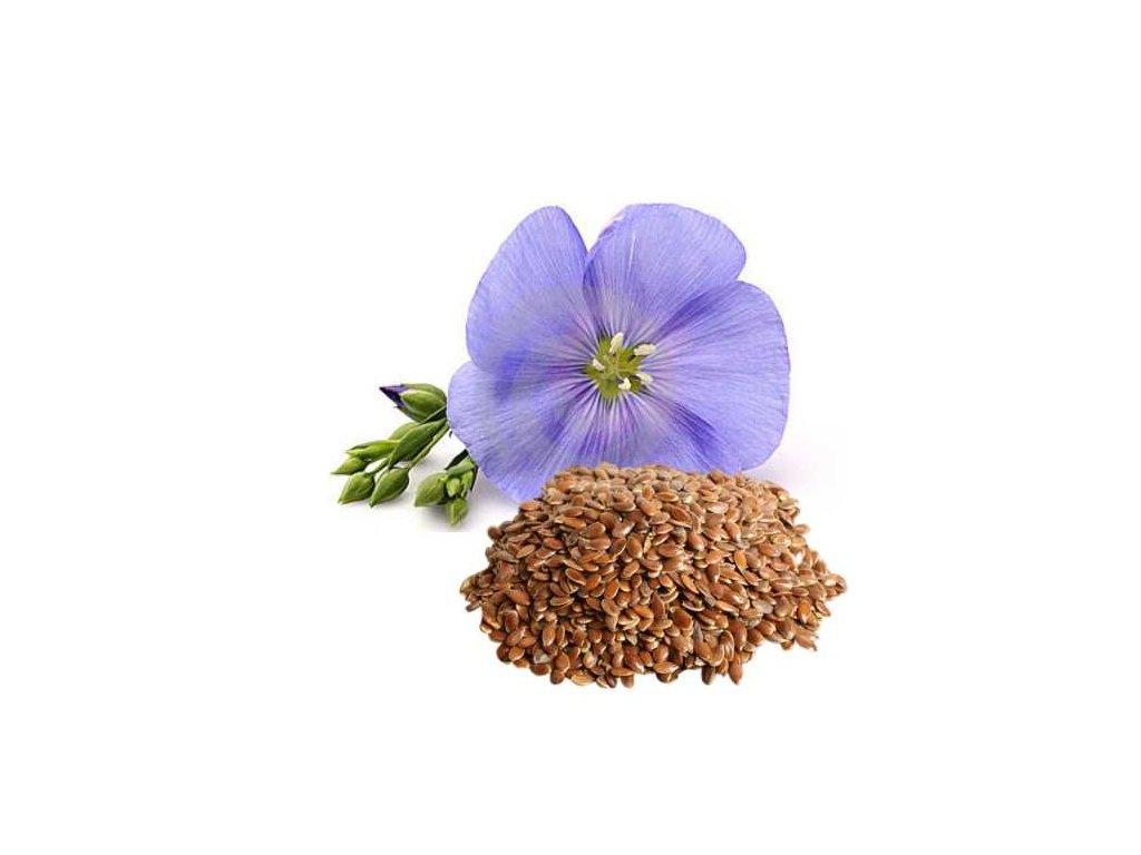 Lněné semínko hnědé Puritas® 1000g sáček