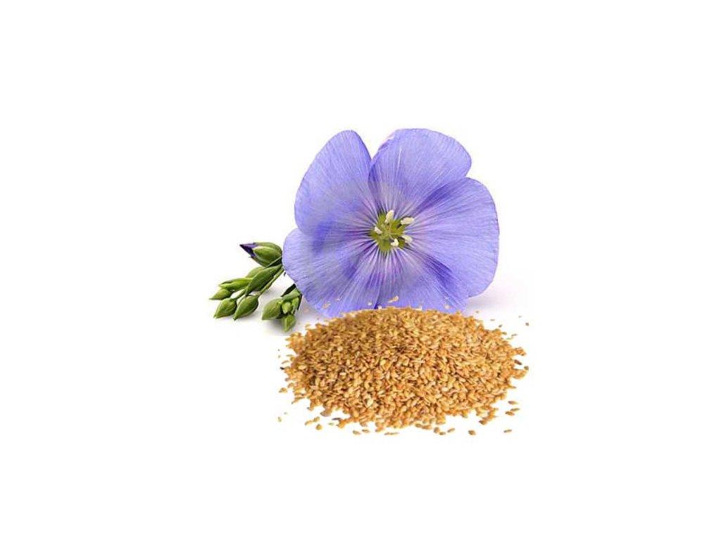Lněné semínko zlaté Puritas® 1000g sáček