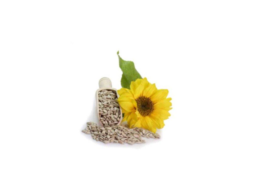 Slunečnicové semínko loupané Puritas® 1000g sáček