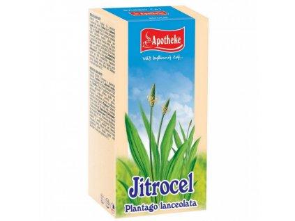 Apotheke Jitrocel čaj 20x1,5g