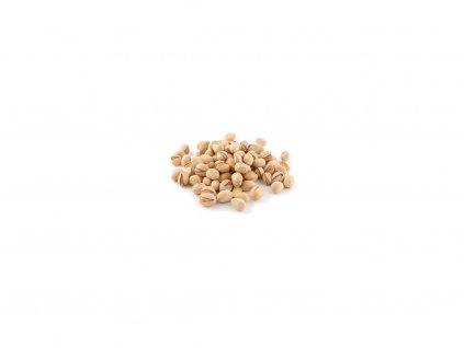Pistácie pražené solené USA 3kg Sušené plody