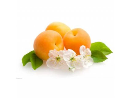 Meruňky natural 1000g bez přidaného cukru a SO2 GASTROP
