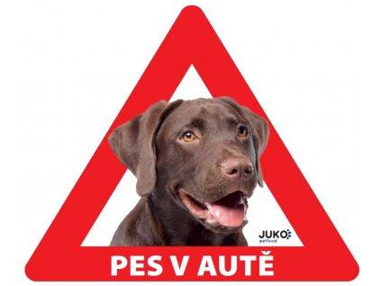 Samolepka pes v autě venkovní - labrador hnědý