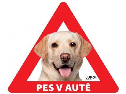 Samolepka pes v autě venkovní - labrador žlutý
