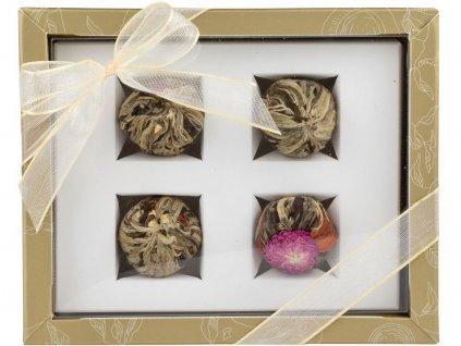 Adikia zlatá set kvetoucích čajů Oxalis
