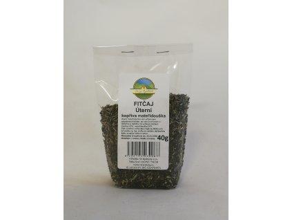 Úterní kopřiva mateřídouška - FIT Kopřivový čaj 40g Dary Rychleb