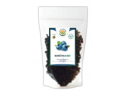 Borůvka plod BIO Salvia Paradise