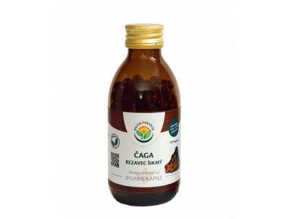Čaga - Rezavec šikmý kapsle Salvia Paradise