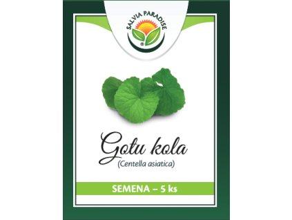 Gotu kola semena 5ks Salvia Paradise
