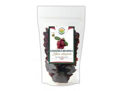 Kanadská brusinka plod Salvia Paradise