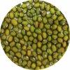 Gastro Fazole Mungo  Puritas® 5Kg Doy-pack ZIP