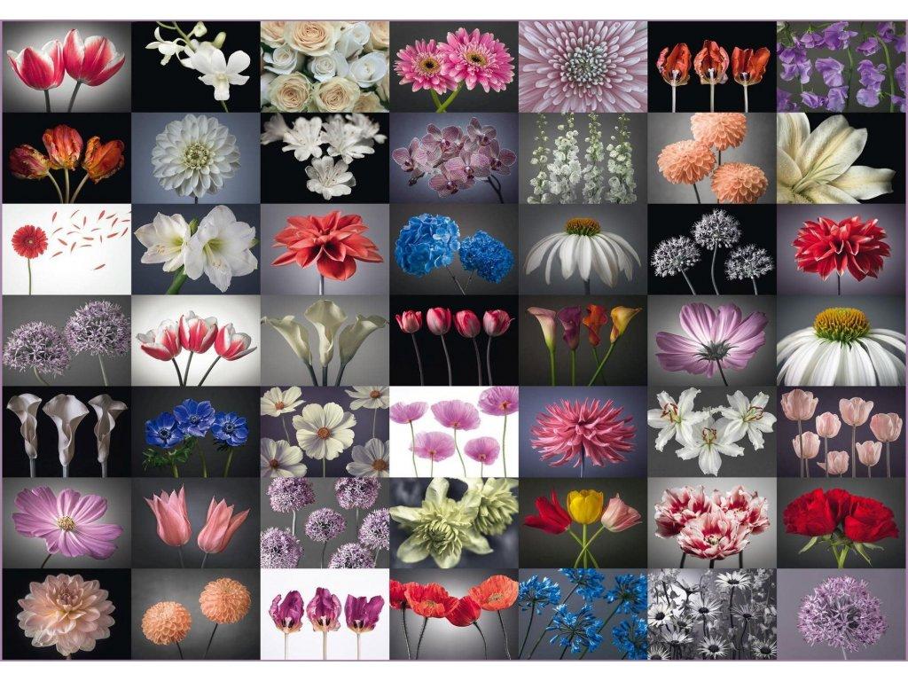 SCHMIDT Puzzle Květinový pozdrav 2000 dílků