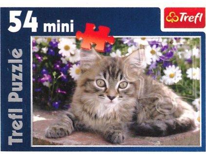 TREFL Puzzle Mourované koťátko 54 dílků