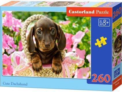 CASTORLAND Puzzle Jezevčík v košíku 260 dílků