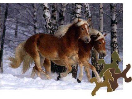 D-TOYS Puzzle Kouzlo koní: Haflingové v zimě 239 dílků