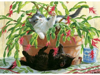 COBBLE HILL Puzzle Koťata v kaktusu 1000 dílků