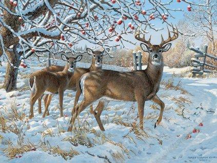 COBBLE HILL Puzzle Jelen se srnami v zimě 500 dílků