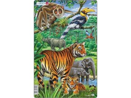 LARSEN Puzzle Džungle s tygrem 29 dílků