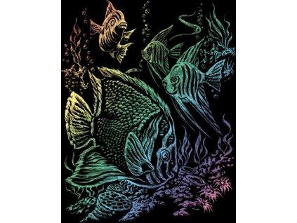 Duhový škrabací obrázek Tropické ryby