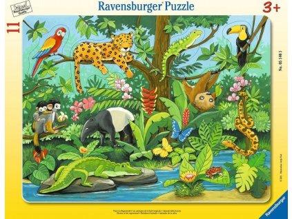 RAVENSBURGER Vkládačka Zvířátka z deštného pralesa 11 dílků