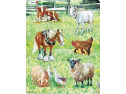 LARSEN Vkládací puzzle Domácí zvířátka 34 dílků