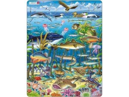 LARSEN Puzzle Pod mořem 60 dílků
