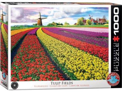 EUROGRAPHICS Puzzle Pole tulipánů (HDR) 1000 dílků