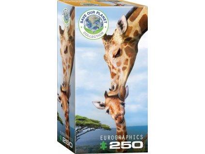 EUROGRAPHICS Puzzle Žirafy XL 250 dílků