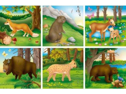 ADAMIGO Obrázkové kostky Lesní a polní zvířata ll, 16 kostek