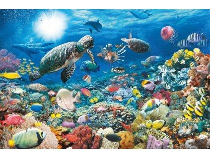 RAVENSBURGER Puzzle Život na korálovém útesu 5000 dílků