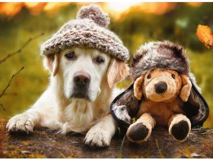 RAVENSBURGER Puzzle Labrador připravený na zimu 500 dílků
