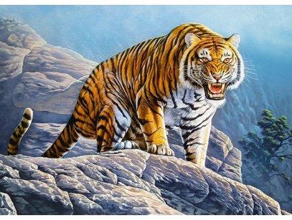 CASTORLAND Puzzle Tygr na skále 180 dílků
