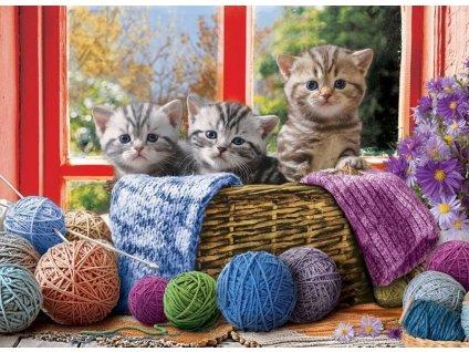 EUROGRAPHICS Puzzle Pletoucí koťata XL 500 dílků