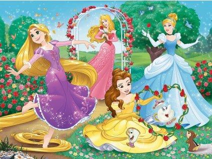 TREFL Puzzle Disney princezny: Být princeznou 30 dílků