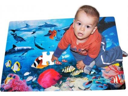 LC Pěnové podlahové puzzle Delfíni 54 dílků