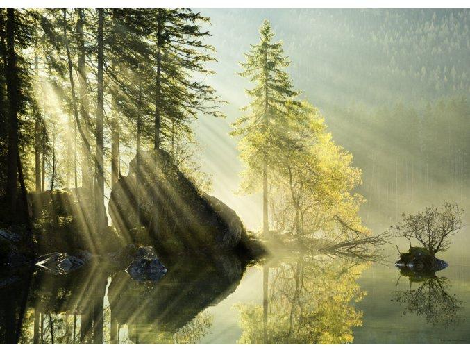 Magic forests: Ranní záře (Morning Glow)