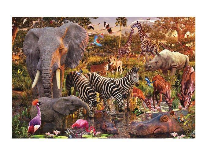 David Penfound: Africká zvířata