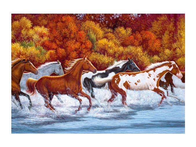 Mustangové (Koně v cvalu)- HQC