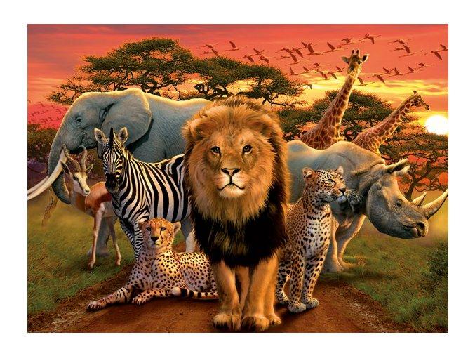 Africká nádhera (African Splendor)