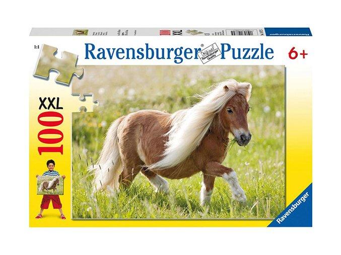 Malý Pony (Little Pony) XXL