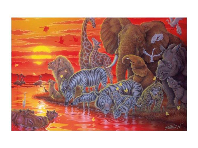 Afrika - zvířata u napajedla