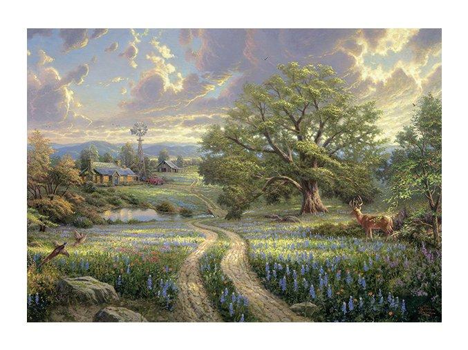 Thomas Kinkade: Venkovský život (Country Living)