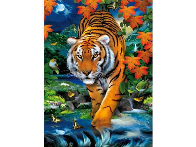 Tygr na lovu - 3D efekt + brýle