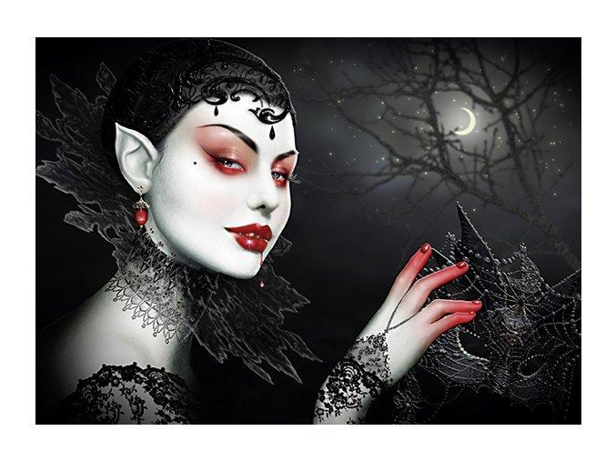 Maxine Gadd: Dáma v černém (Lady in Black)
