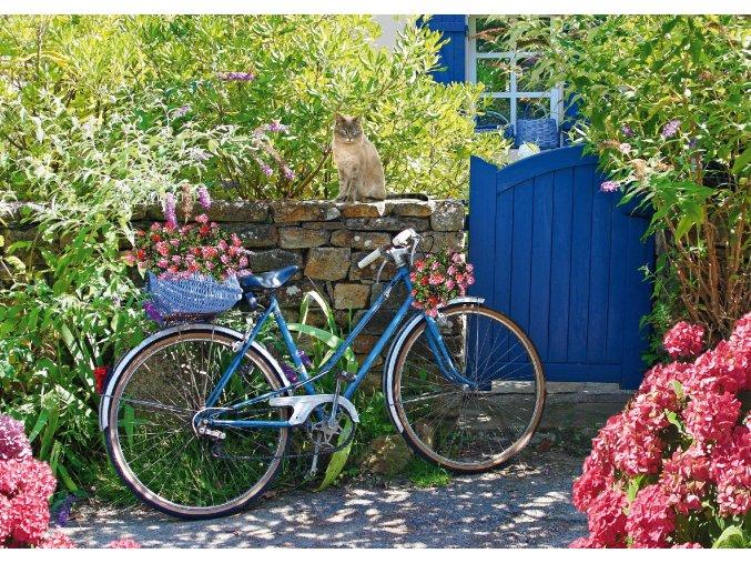 Modrý bicykl s kočkou