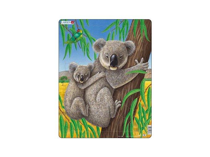 Medvídek Koala s mládětem - deskové